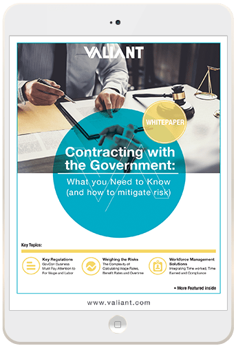 Government Contracting in Security White Paper